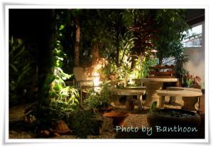 สวนกลางคืน