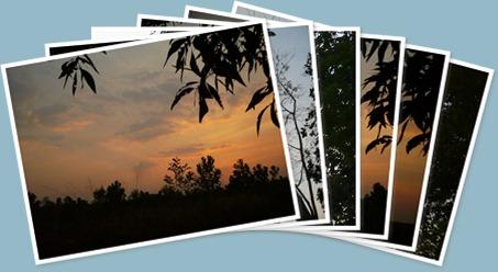 ดู sunset