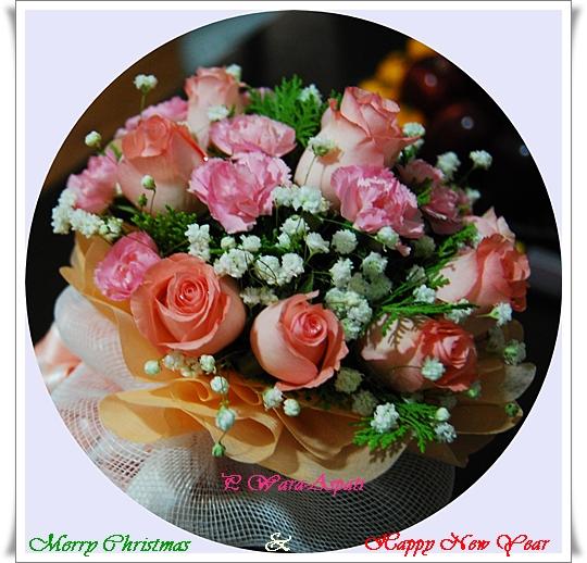 http://lanpanya.com/linhui08/files/2009/12/dsc_0245n.jpg